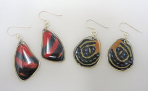 Superb Numberwing Resin Earrings -- Callicore excelsior