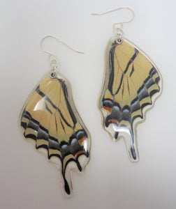 Two Tailed Tiger Swallowtail Resin Earrings - Papilio multicaudata