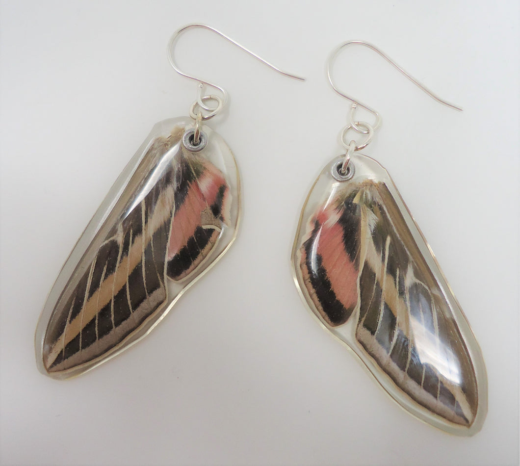 White Lined Sphinx Moth Resin Earrings