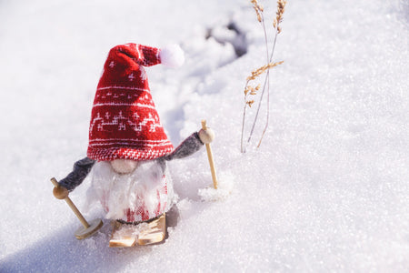 dwarf gnome on snow