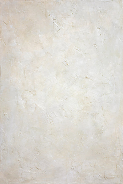 "BTL Custom Beige - Painted Plaster Photo Surface (24""x36"")"