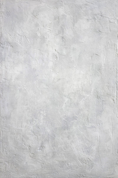 "BTL Custom Light Gray - Painted Plaster Photo Surface (24""x36"")"