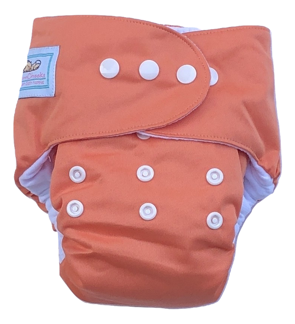Peach PUL Nappy