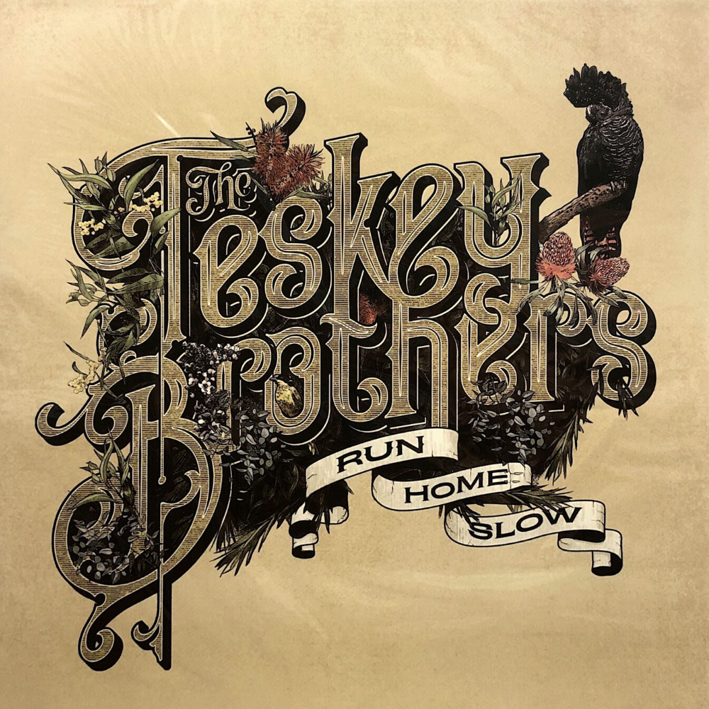 the teskey brothers vinyl record beach town
