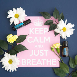 doterra breathe essential oil blend respiratory blend