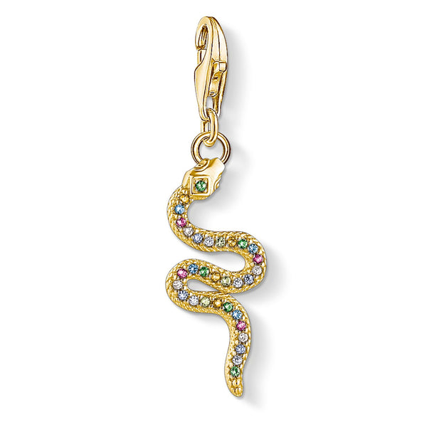 Charm Pendant Colourful Snake