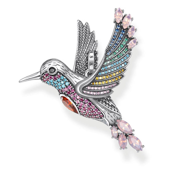 Pendant Colourful Hummingbird Silver