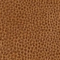 Wild Fashion Prints Brown Leather 12x15 HTV