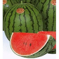 Melon-Hime Kansen Ice Box Watermelon