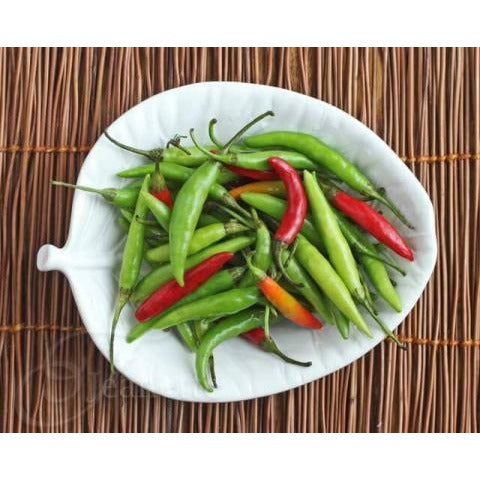 Pepper-Thai Bird