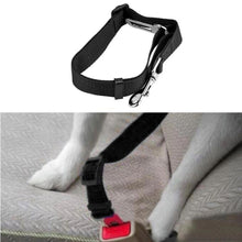 Dog & Cat Seat Belts Leash