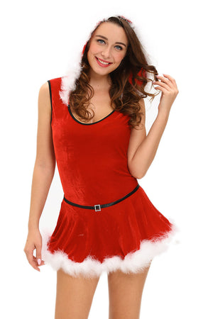 Plus Size Soft Fur Trim Red Santa Teddy and Skirt Costume