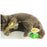 Electric Rotating Colorful Cats' Toy