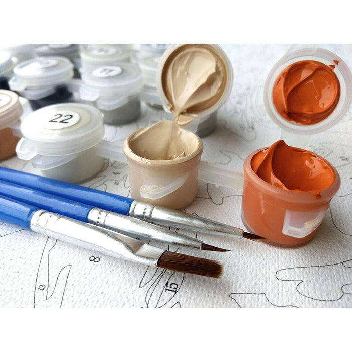 European Flowers - Van-Go Paint-By-Number Kit