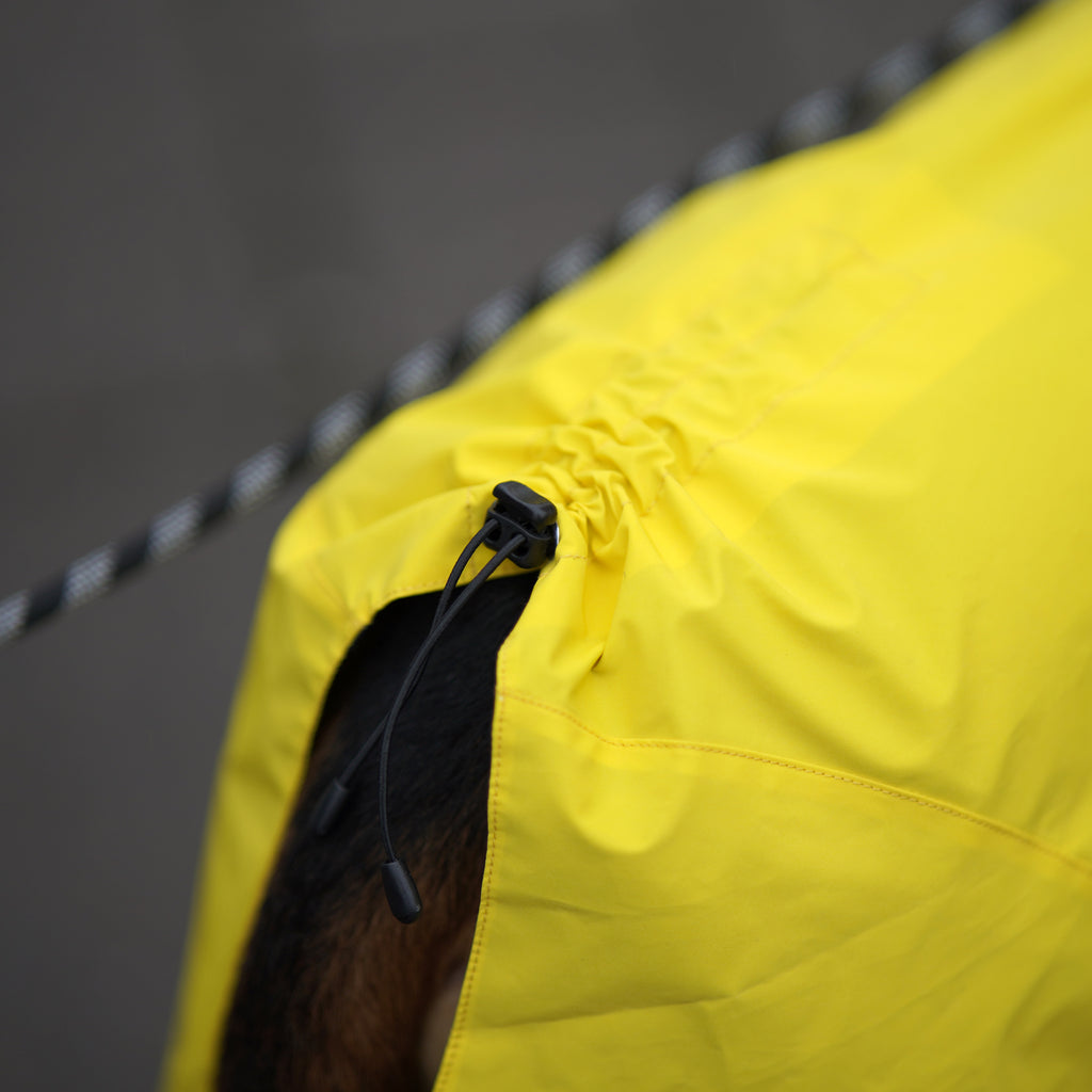 A close up from a dog that is wearing PAIKKA visibility raincoat yellow