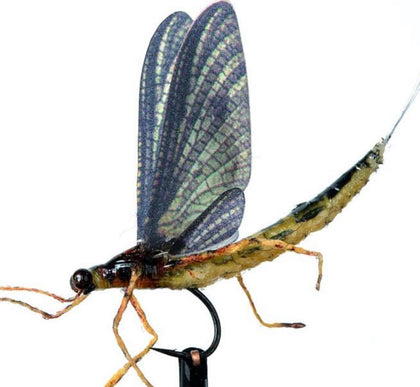 Realistic Fly Tying