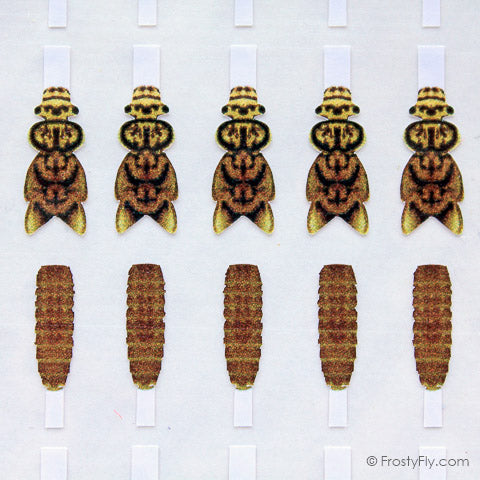 Hemingways Realistic Stonefly Nymph Wing Buds and Backs by Frostyfly