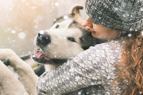 Benefits of Hugging Your Dog