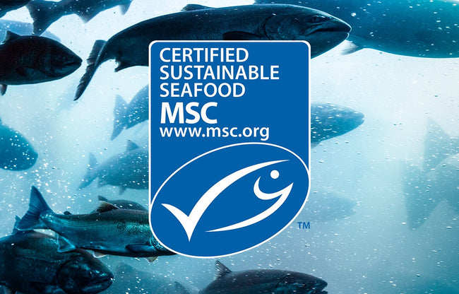 Our Wild Alaskan Salmon Oil Is MSC Certified Sustainable
