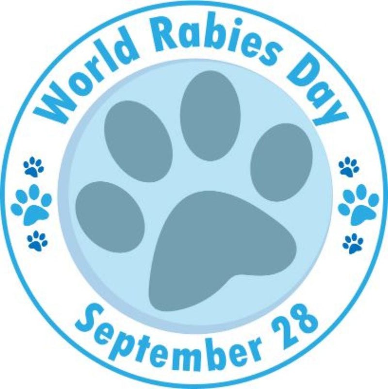 How You Can Help Control Rabies