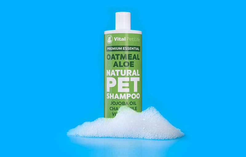 Introducing our Oatmeal Aloe Natural Pet Shampoo