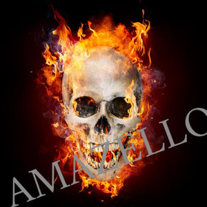 5D Diamond Painting Flaming Skull