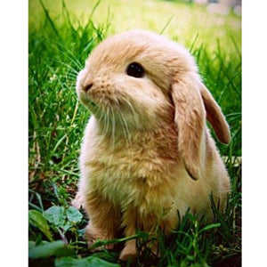 5D Diamond Painting Cute Rabbit