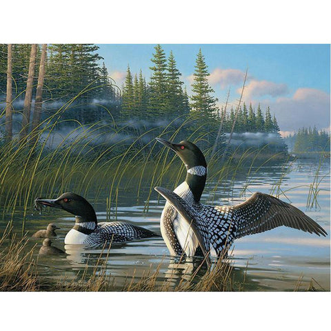 5D Diamond Painting Loons