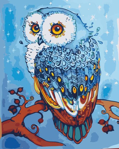 Image of Paint by Numbers Mini Owl Collection