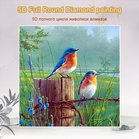 5D Diamond Painting Two Birds **round drills only**