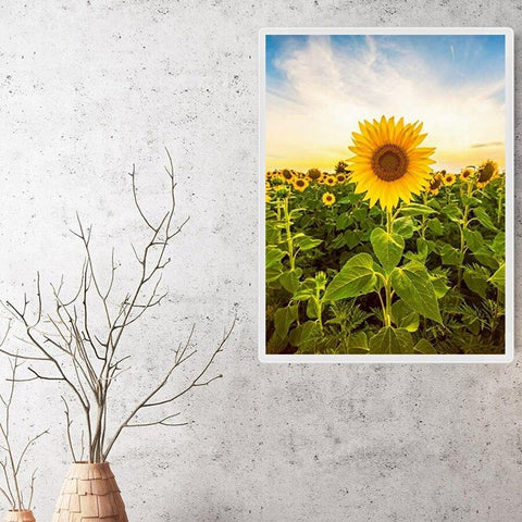 Image of 5D Diamond Painting Your Day to Shine Sunflower