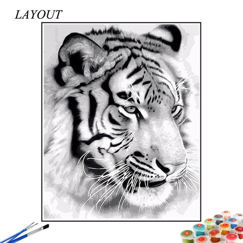 Paint by Numbers White Tiger