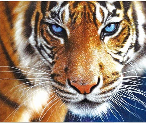 Image of 5D Diamond Painting Crystal Blue Eyed Tiger
