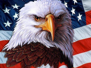 5D Diamond Painting American Bald Eagle & Flag