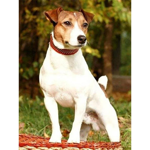 Image of 5D Diamond Painting Jack Russel