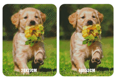 Image of 5D Diamond Painting Cute Labrador Pup
