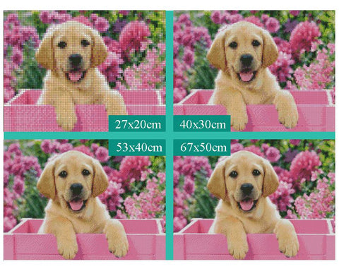 Image of 5D Diamond Painting Cute Dog and Flower