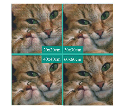 Image of 5D Diamond Painting Cute Fluffy Cat