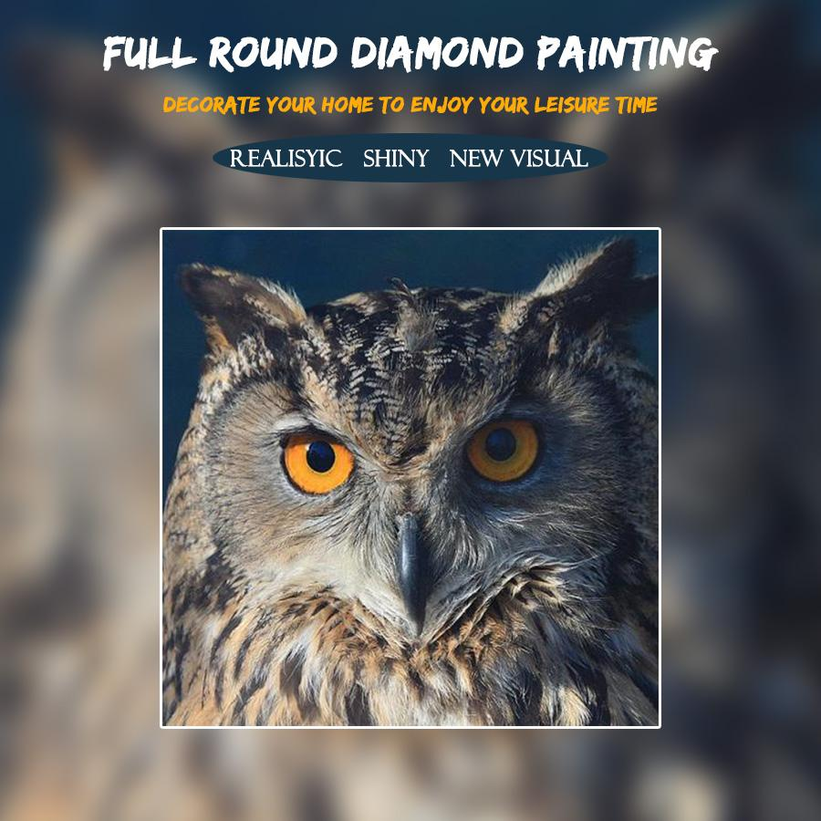 5D Diamond Painting Wild Owl
