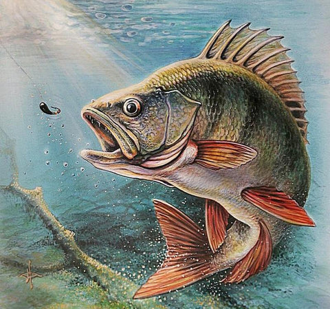 Image of 5D Diamond Painting Water Fish