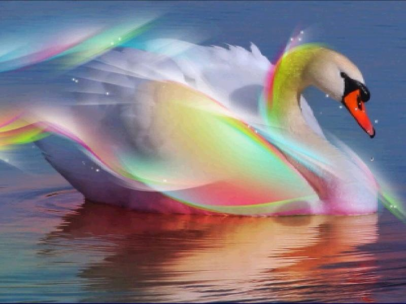5D Diamond Painting Beautiful Swan