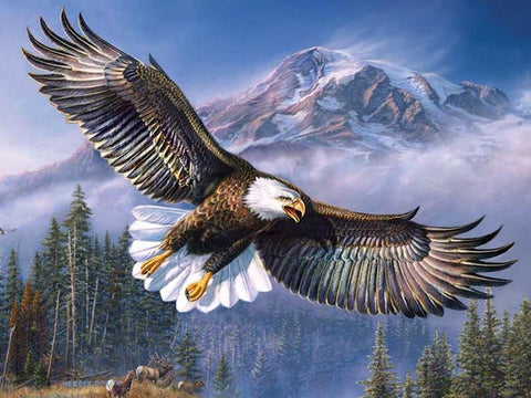 Image of 5D Diamond Painting Flying Eagle