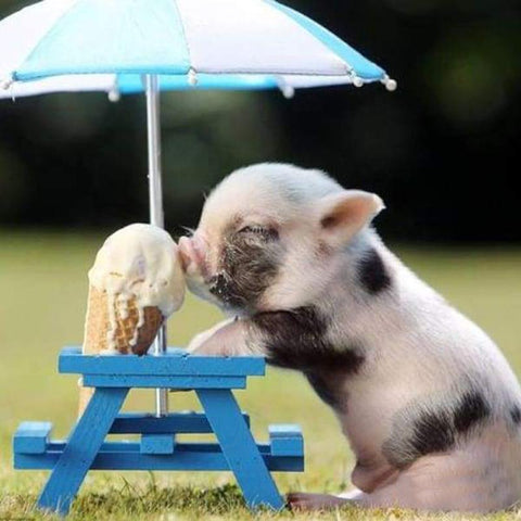 Image of 5D Diamond Painting Pig Eats Ice Cream