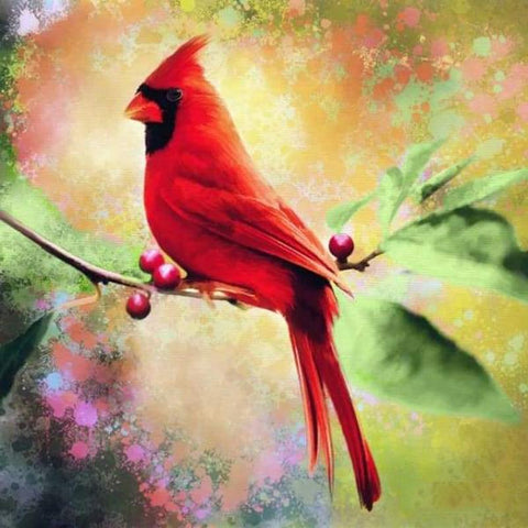 Image of 5D Diamond Painting Adult Glittering Birds