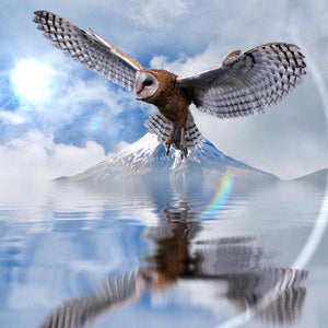 5D Diamond Painting Beautiful Soaring Eagle