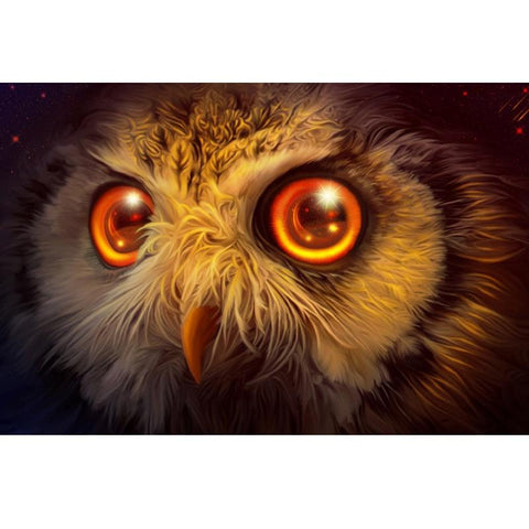 Image of 5D Diamond Painting Owl Face