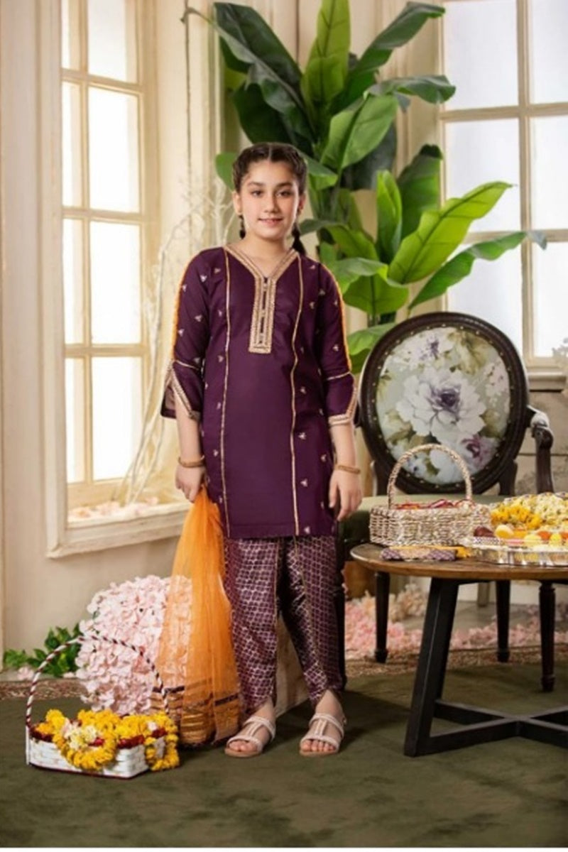 FCP-04 purple Printed Embroidered kids Wear Lawn two piece