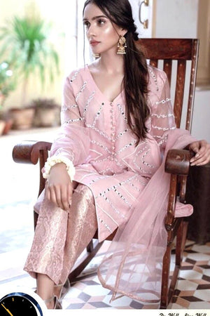 Agha Noor AGN-S01 Baby Pink Unstitched Organza Collection Embroidered Three Piece