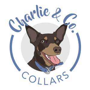 Charlie & Co. Collars