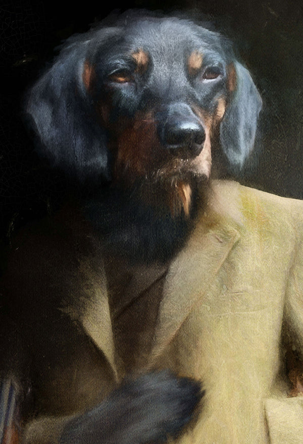 Fenton Pet Portrait at Turner & Walker